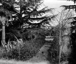 Per 50.000 euros, Can Feu pot recuperar i obrir un dels millors jardins romàntics del país 2